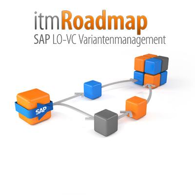 it-motive SAP Variantenmanagement Paket