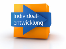 Icon_button_Individualentwicklung