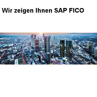 SAP Finanzwesen im Fokus