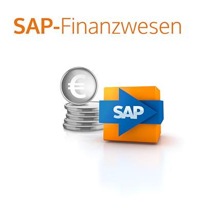 it-motive SAP Finanzwesen Paket