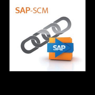 it-motive SAP SCM Paket