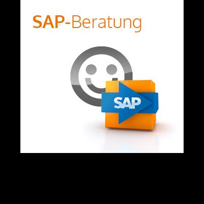 it-motive SAP Beratungspaket
