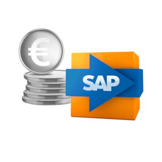 SAP Finanzwesen Logo
